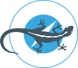 Airborne Flight Training Logo